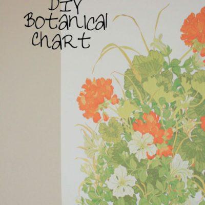 DIY Botanical Chart