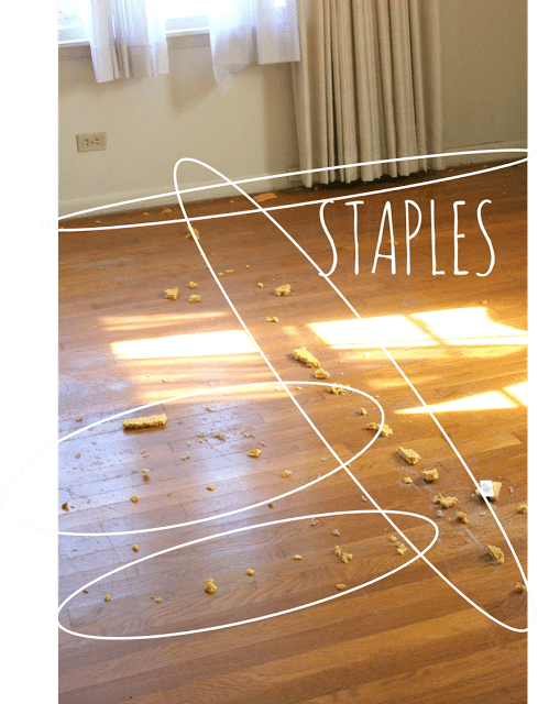 carpet staples and carpet padding stuck on hardwood floors