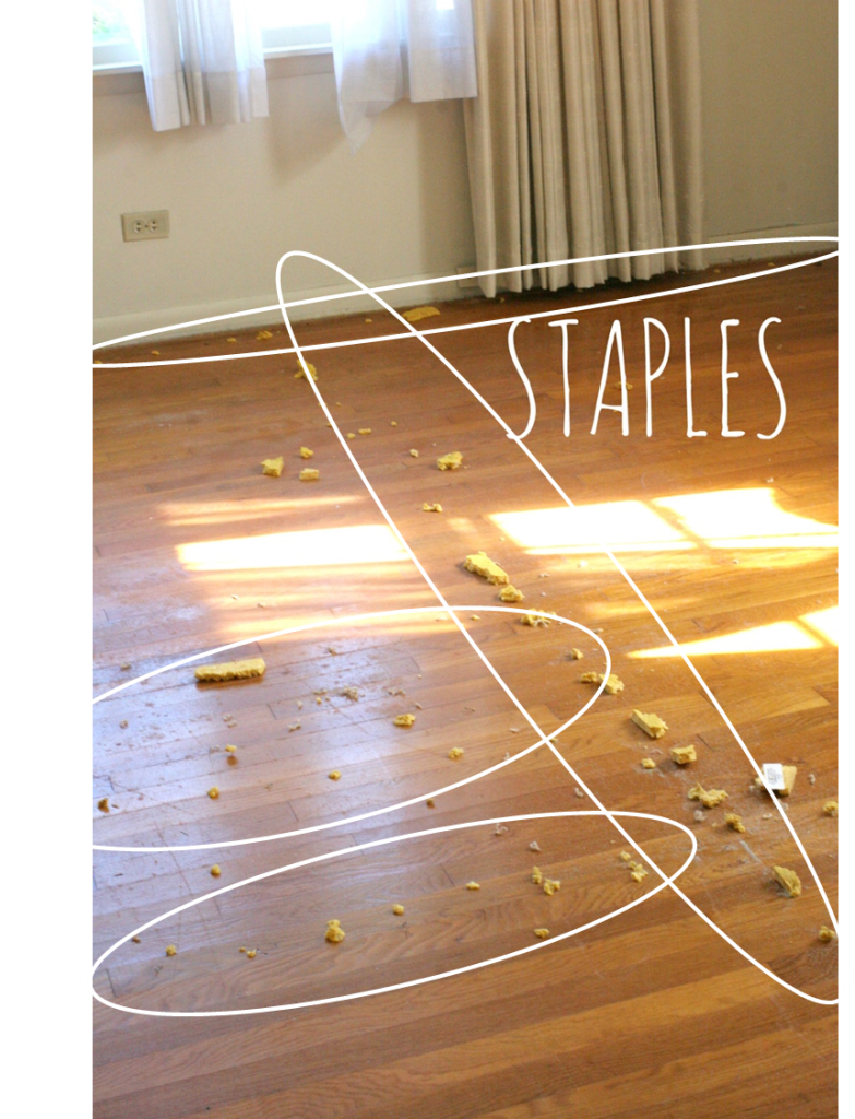 How to remove carpet staples from wood floors the easy way carpet staples and carpet padding stuck on hardwood floors dailygadgetfo Gallery