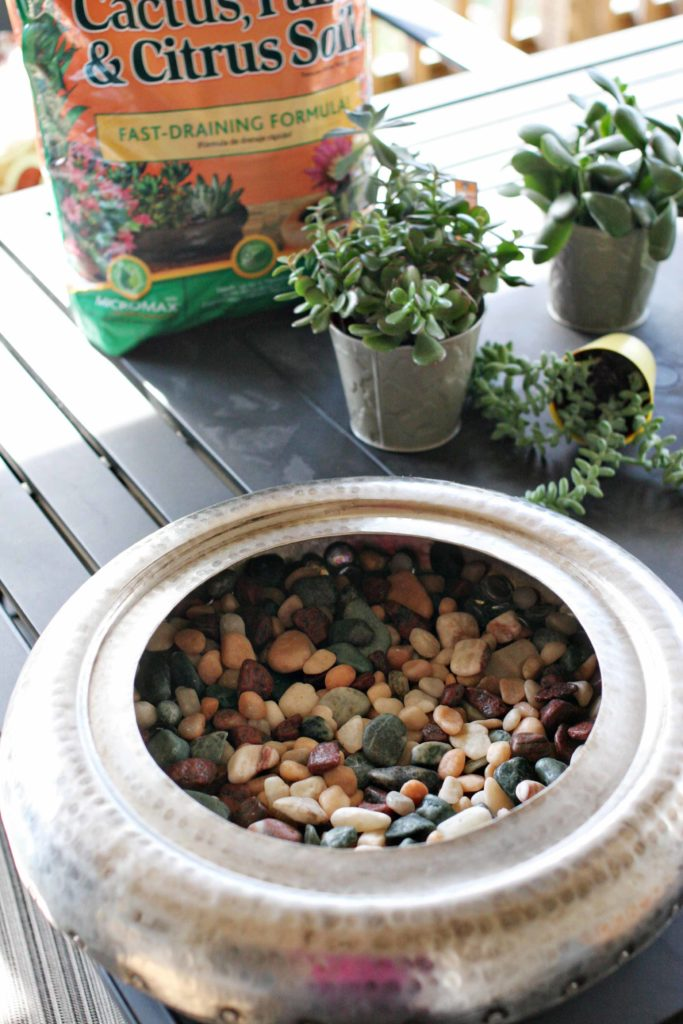 rocks in a bowl, planting succulents