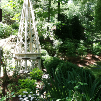 Visiting a Botanical Trail by Jon Carloftis and Rockcastle River Trading Co.