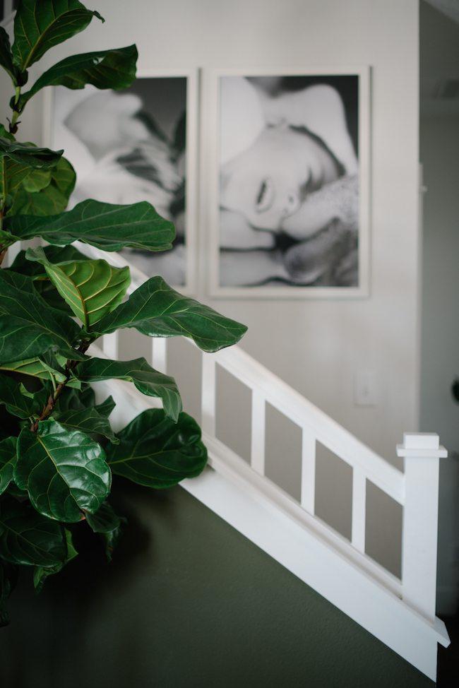 B&W photos stairs
