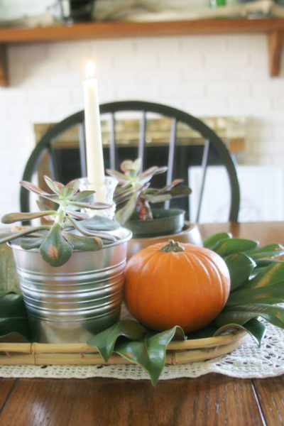 Simple Fall Centerpiece with Pumpkins, Succulents & Magnolia Leaves