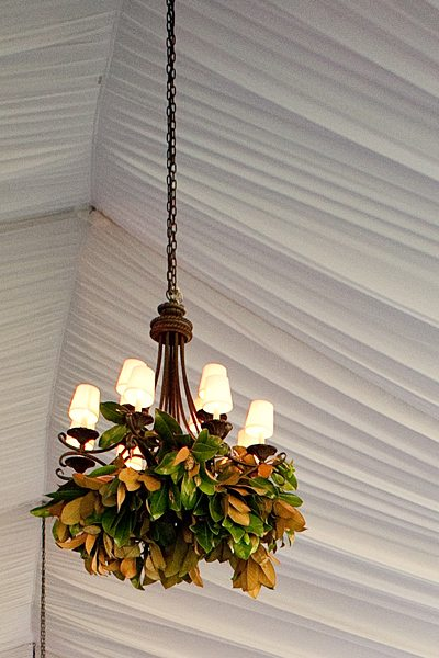 magnolia leaves in a chandelier
