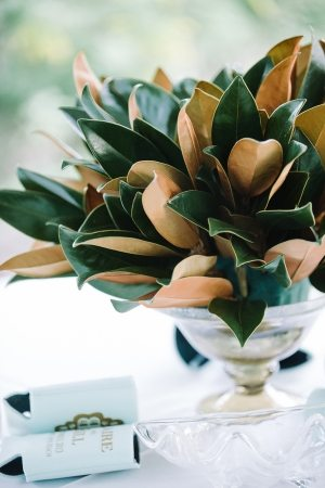 magnolia leaves in a vase
