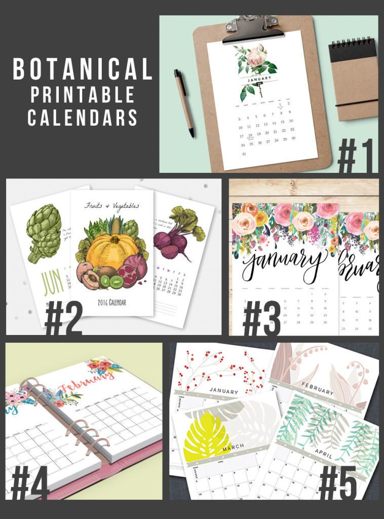 5 Botanical Printable 2016 Calendars