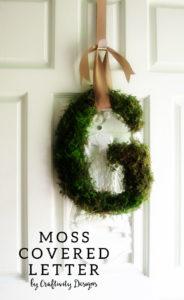 moss-covered-letter-wreath-DIY-front-door-PIN