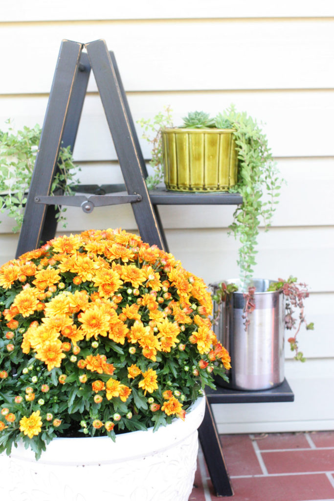 Would you like a warm and cozy home this fall season? Check out this Rustic + Natural Fall Home Tour by @CraftivityD