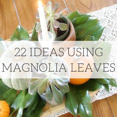 22 Ideas Using Magnolia Leaves