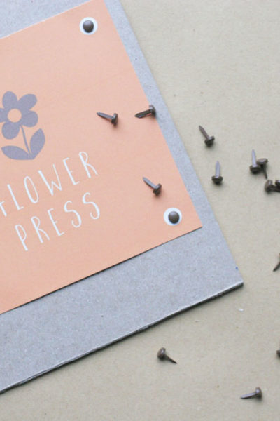 How to Make a Simple DIY Flower Press