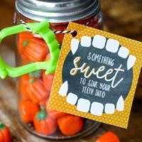 Something Sweet Halloween Gift Idea