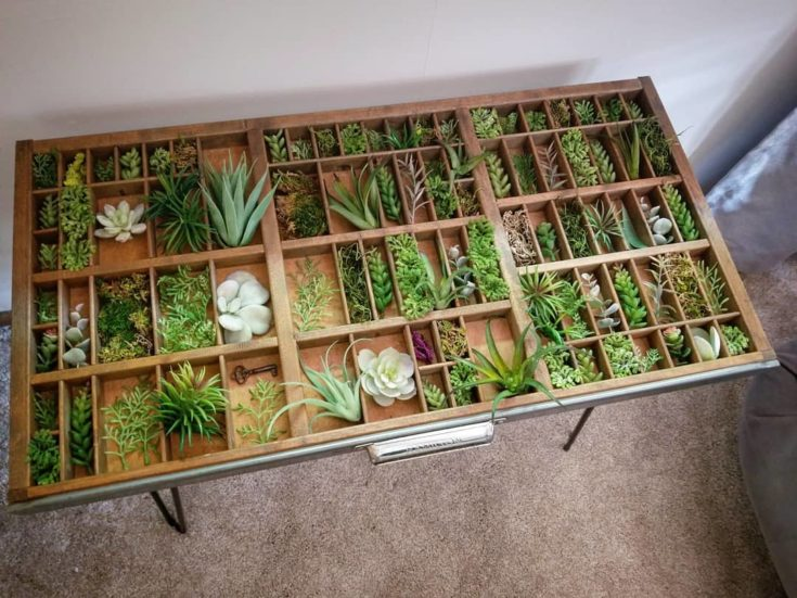 Air Plants (or Faux Succulents and Sprigs)