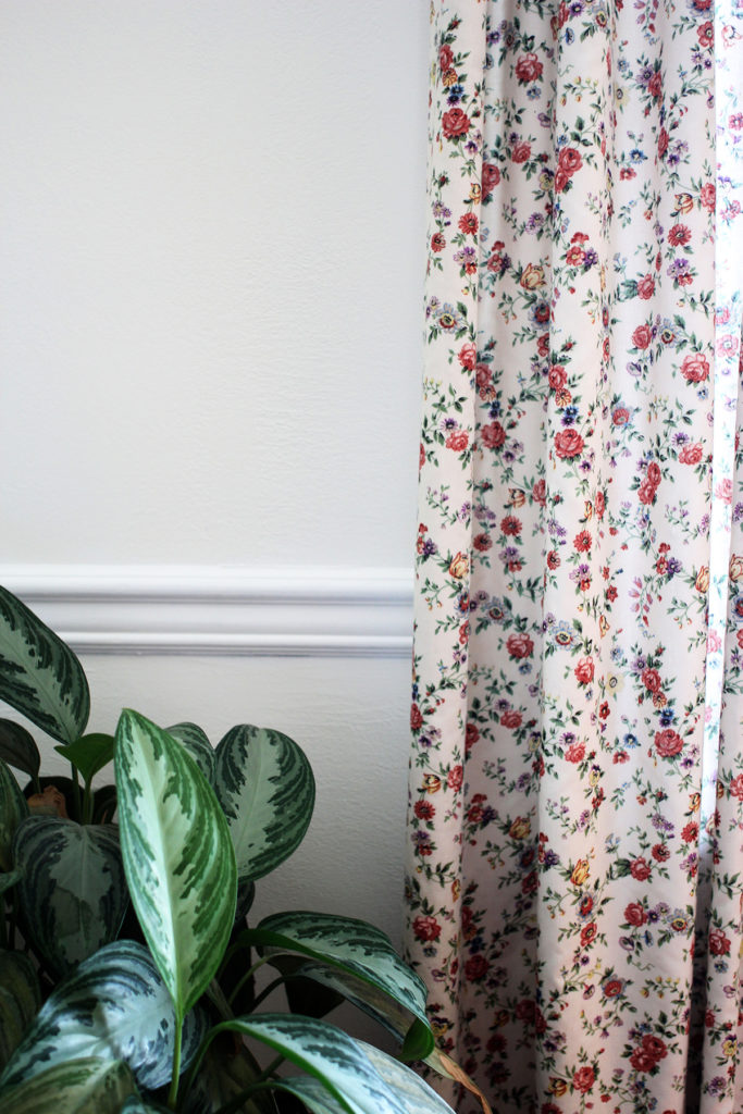 Floral Curtain, White Trim, White Walls, and Plant in a Dining Room