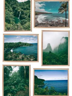 Hawaiian Art Prints in Wood Frames
