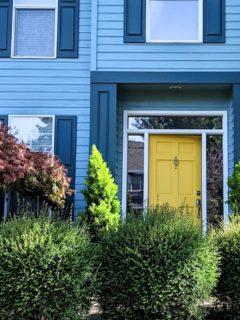 yellow front door ideas